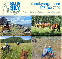 Blue Sky Sage Horseback Riding Vacation