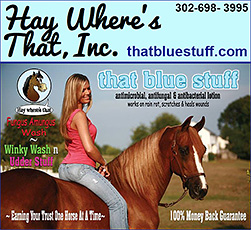 That Blue Stuff, Fungus Amungus, Winky Wash n Udder Stuff, by Hay Where's That, Inc.