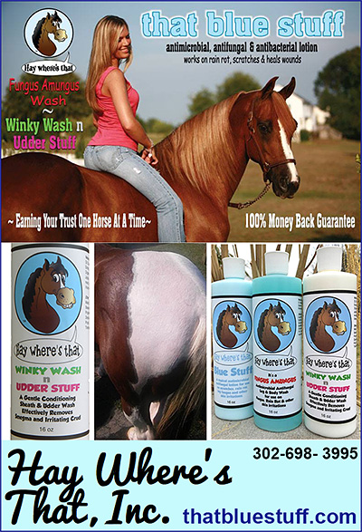 Horse Sheath and Udder Care Lotion that blue stuff.