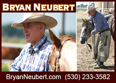 Bryan Neubert Horse Training Clinician