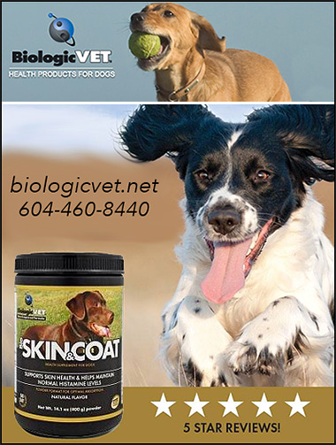 Biologic Vet  Dog Coat Supplement