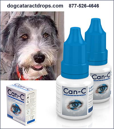 Can-C Dog Eye Health Product