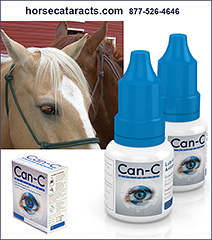 CAN-C Eye Drops for Horses