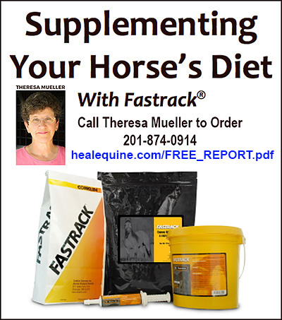 Supplement Your Horses Diet.