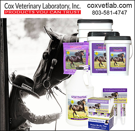 Cox Veterinary Laboratory Horse Health Supplements