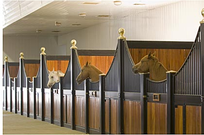 home horse stall design ideas horse stalls - Horse Barn Design Ideas