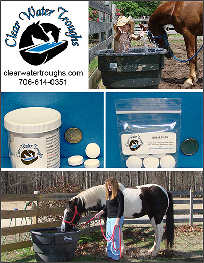 Clear Water Troughs Clean Water for Horses