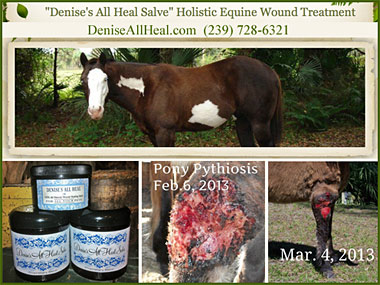 Denise's All Heal Salve