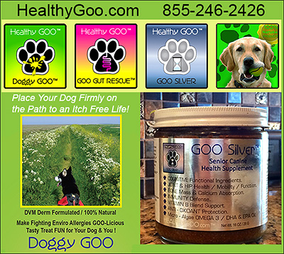 Doggy Goo Dog health Supplement