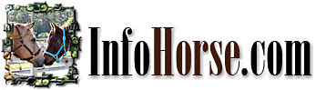 Home- InfoHorse.com Logo Dream and Sugar