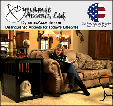 Dynamic Accents Furniture for Dogs