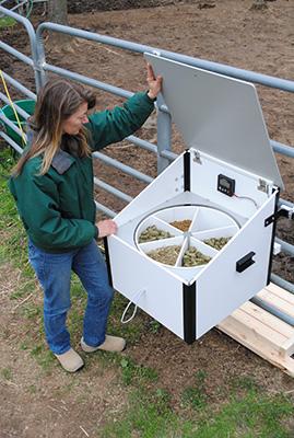 Slow Feeding for Better Horse Health