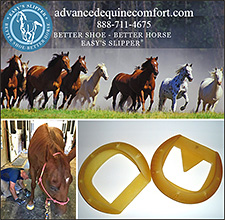 Easy Slipper by Advanced Equine Comfort