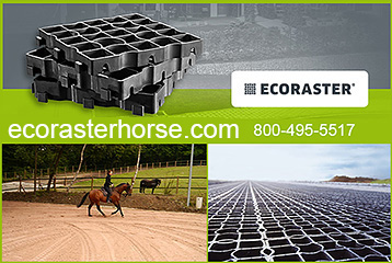 ECORASTER Mud Management for Horse Properties