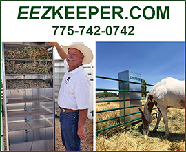EEZ Keeper Automatic Horse Feeder