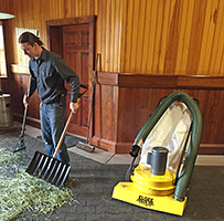 Cleaning the Barn for Horse Health