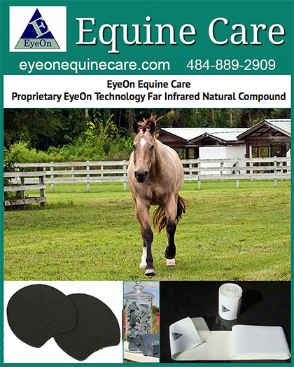 Eye on Equine Care Suspensory Ligament Products