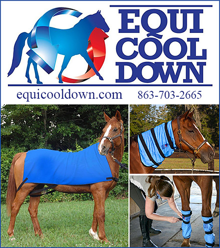 Cooling Sheets for Horses