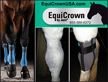 EquiCrown Leg and hock wraps for Horses!