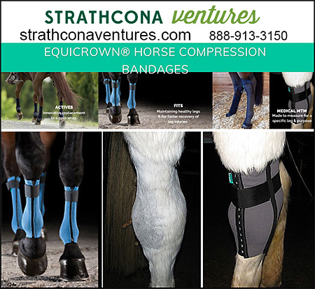 Equicrown Horse Compression bandages