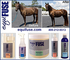 EquiFUSE Equine Shampoo and Coat Care