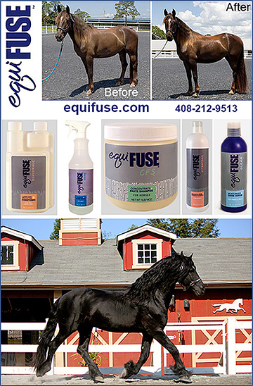 EquiFUSE Horse Grooming Products