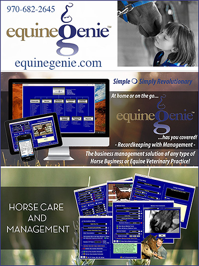 equineGenie Horse Business Software
