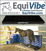 EquiVibe Horse Vibration Therapy