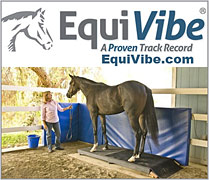 EquiVibe Vibration Therapy for Horses