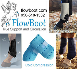 FlowBoot Horse Protection Boots