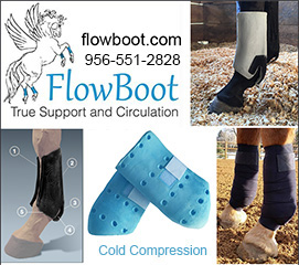 Flow Boot Support and Circulation for Horses