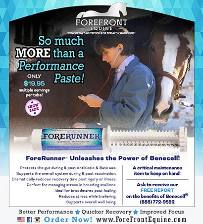 FOREFRONT EQUINE