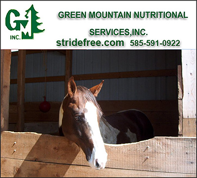 Custom Made Horse Supplements