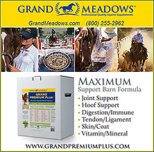 Grand  Premium Plus Complete Horse Supplement