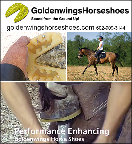GoldenWings Synthetic Horse Shoes