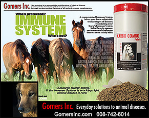 Gomers Inc. Horse Immune System Health