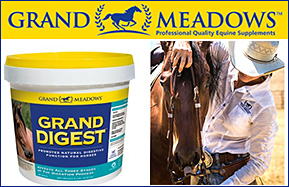 Grand Digest for Horse Healthy Digestion