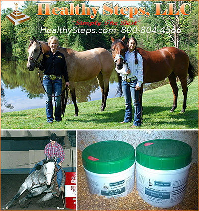 Healthy Steps Horse Joint Supplement