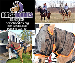 HorseHoodies Horse Insect mask,