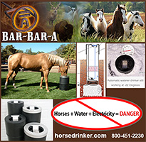 Horse Drinker Automatic Horse Waterer