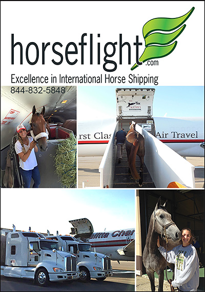 horseflight.com Excellence in Horse Transportation!