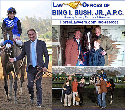 Law Offices of Bing Bush A.P.C., Horse Lawyer