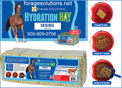 Hydration Hay for Horses