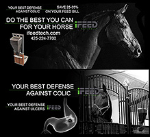 iFeed Automatic Horse Feeder