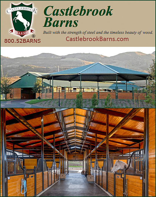 Show equine professional company for Castlebrook barns