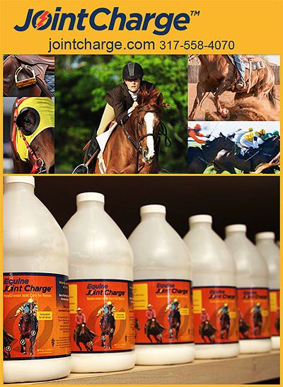 JointCharge Equine Joint Supplement