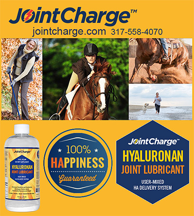 JointCharge Hyaluronan Joint Lubricant