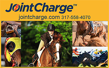 JointCharge Horse Joint Supplement