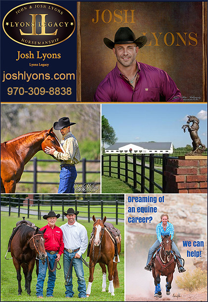 Horse Training Instructor Certification