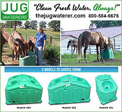 Jug Waterers for Horses!
